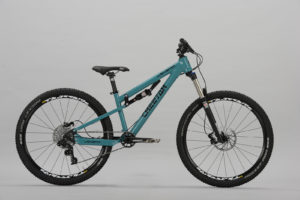 Cheetah Frauen Mountainbike LadySpirit AM